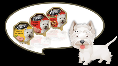cesar dog food dog breed