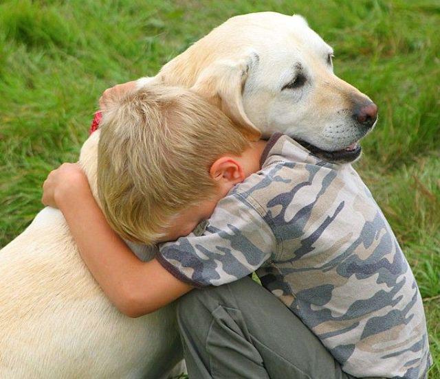 Best Dog Breeds for Kids: Playful Dog