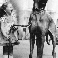 funny big dog with little girl