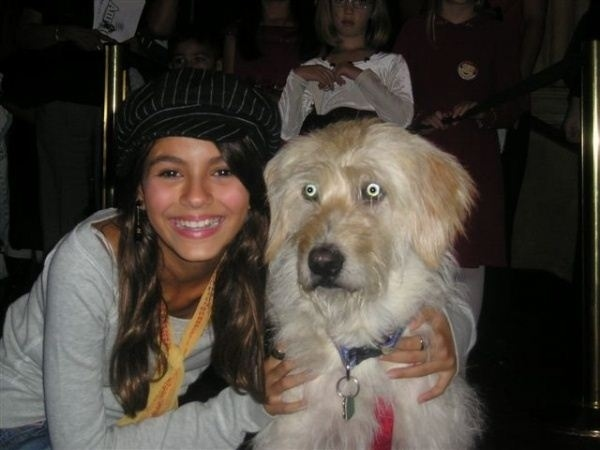 lucky dog with beautiful girl picture