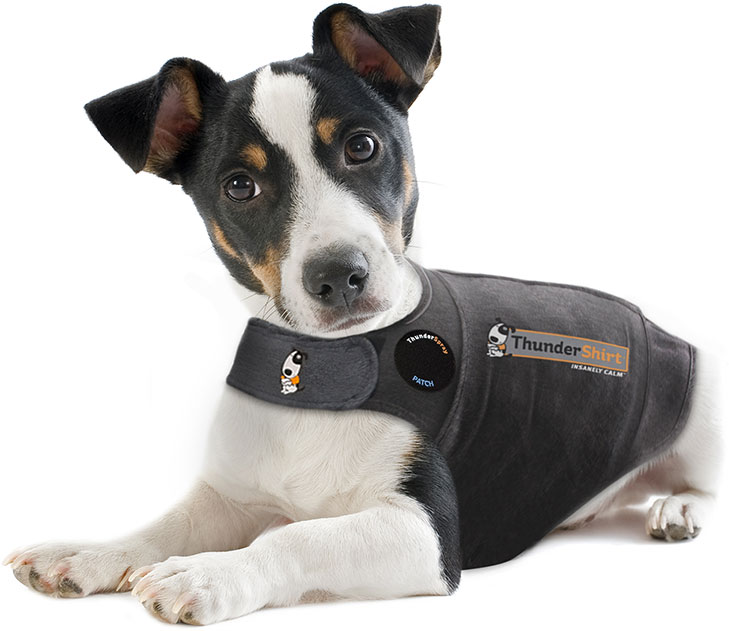 dog-thundershirt